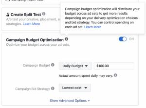 campaign budget